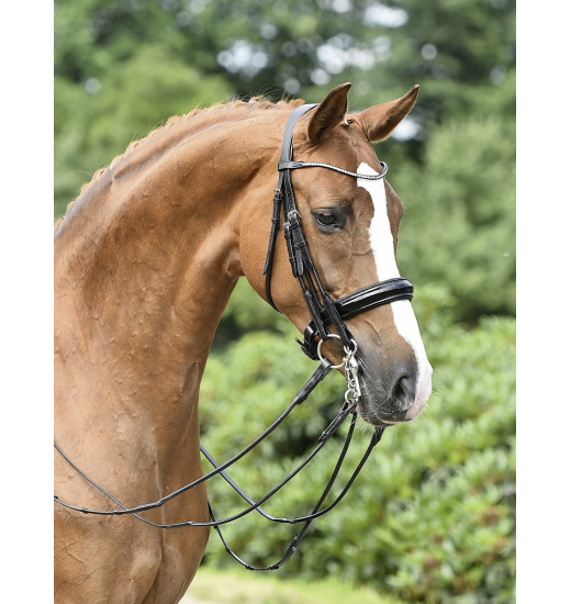 DOUBLE BRIDLE MAILAND