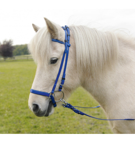 Busse BRIDLE ICELAND SIMPLE-ICE