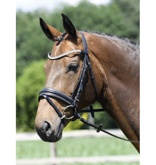 BRIDLE STYLE