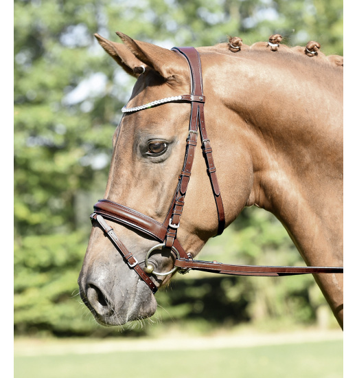 BRIDLE MATERA - 1 in category: bridles for horse riding