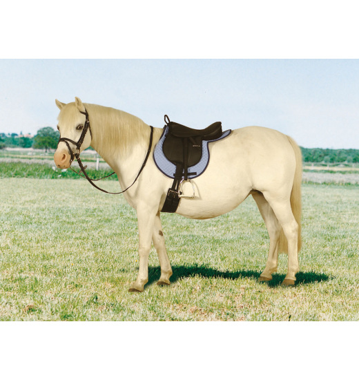 STIRRUP LEATHERS STATUS CHILD - 1 in category: stirrup leathers for horse riding