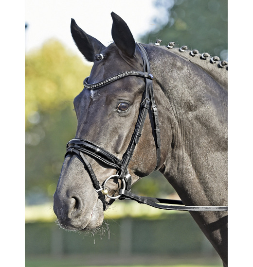 Busse BUSSE BRIDLE LUXURY