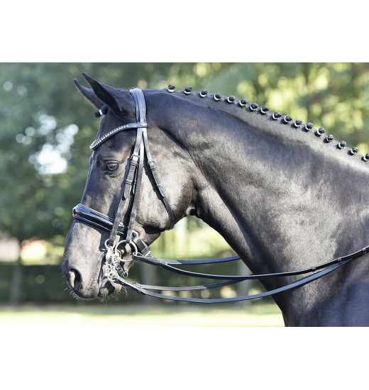 DOUBLE BRIDLE LUXURY - 1 in category: bridles for horse riding