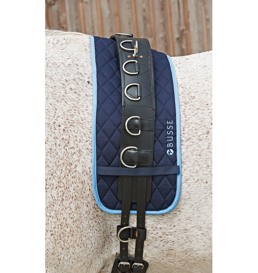 Busse LUNGING PAD COLOUR
