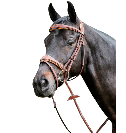 E141 BRIDLE ENGLISH NOSEBAND