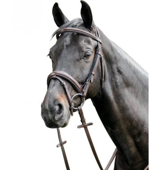 E38 LEATHER BRIDLE - 1 in category: bridles for horse riding