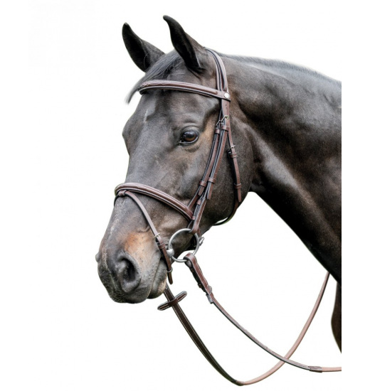 E37 LEATHER BRIDLE
