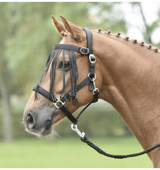 FLYSTRING BROWBAND TAMPERE - 1 in category: Busse for horse riding