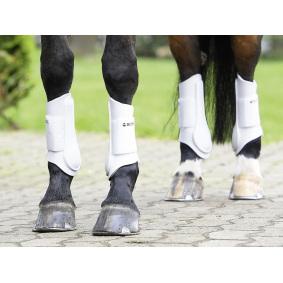 Training horse boots - EQUISHOP
