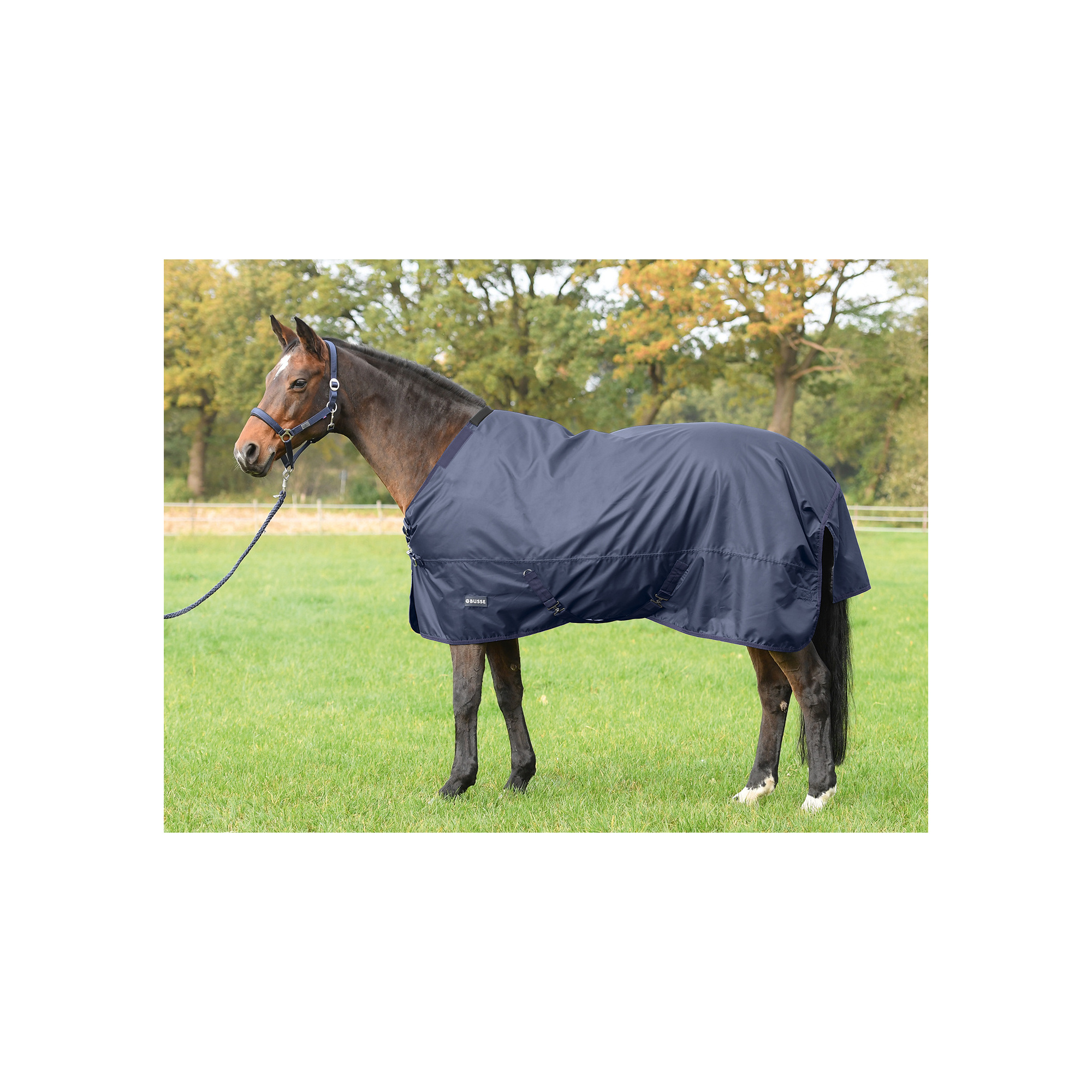 Busse Thermo Turn Out Rug Flexible 100
