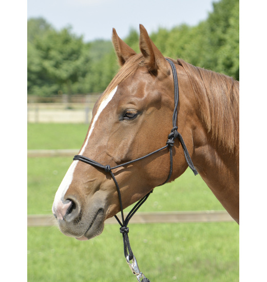 ROPE HALTER SMOOTH II