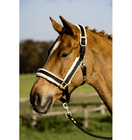 Busse BUSSE HEADCOLLAR COMFY