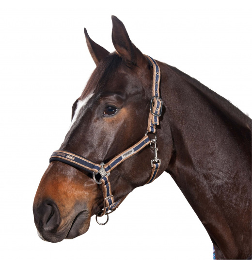 CLASSIC HEADCOLLAR WITH CLASP