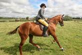 HORSE RIDING LESSON, PART 3