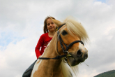 Buying a junior saddle