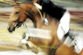 Konsultacje szkoleniowe w Klubie Jazdy Konnej Romico