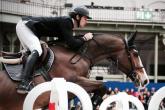 Trensenarten. Welche Trense sollte man fürs Pferd auswählen?