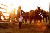 Bryczesy jeździeckie - historia