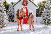 Top 15 jeździeckich prezentów świątecznych dla dzieci i młodzieży