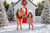 Top 15 equestrian Christmas gifts for teens and kids