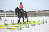 Cavaletti, why is it worth to work on the ground poles