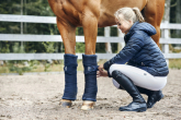 Bandages or boots for horses? When to use what to protect your horse's legs?