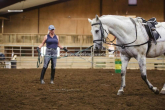 Lunging - step by step