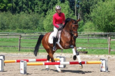 Cavaletti - gains from working on arcs