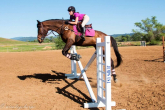 First jumps with a young horse - a few rules and tips